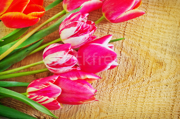 Tulipes fleur texture amour design vert Photo stock © tycoon