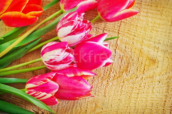 Tulipany kwiat tekstury miłości projektu zielone Zdjęcia stock © tycoon