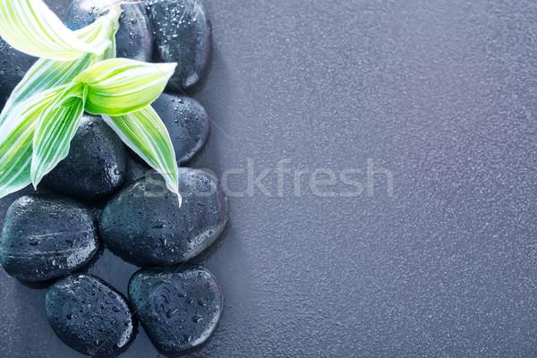 黒 石 水 自然 葉 美 ストックフォト © tycoon