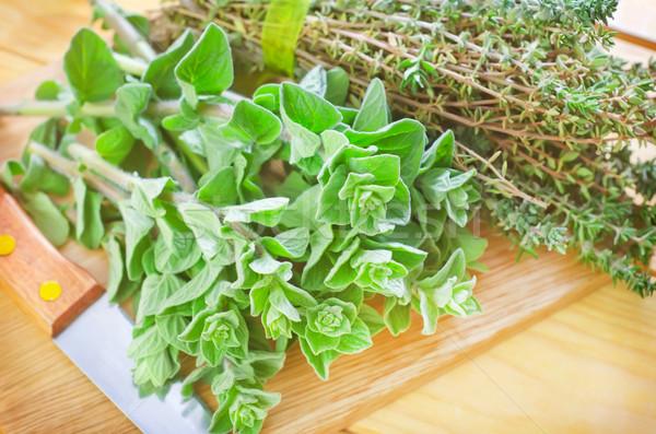 Keklikotu ahşap yaprak bitki pişirme taze Stok fotoğraf © tycoon