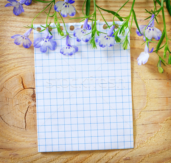 сведению цветок любви Vintage белый стране Сток-фото © tycoon