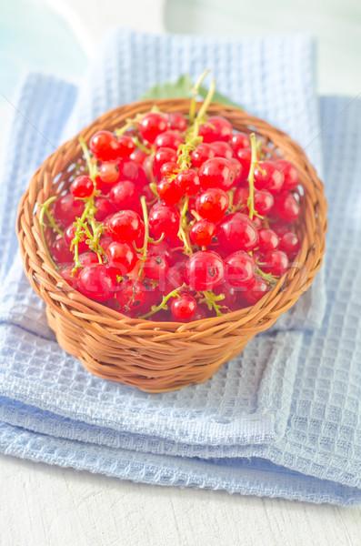 Piros ribiszke étel keret nyár zöld Stock fotó © tycoon