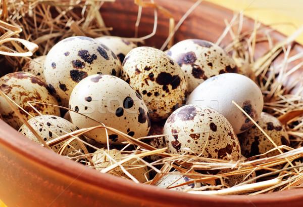 raw guail eggs Stock photo © tycoon