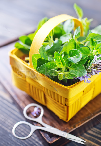 Proaspăt iarbă masa de bucatarie diferit textură frunze Imagine de stoc © tycoon