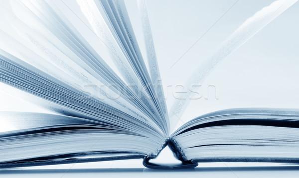 open book Stock photo © tycoon