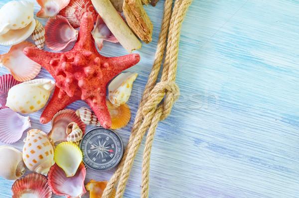 Zee schelpen kompas strand textuur natuur Stockfoto © tycoon