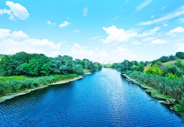 реке Украина большой Blue Sky небе дерево Сток-фото © tycoon