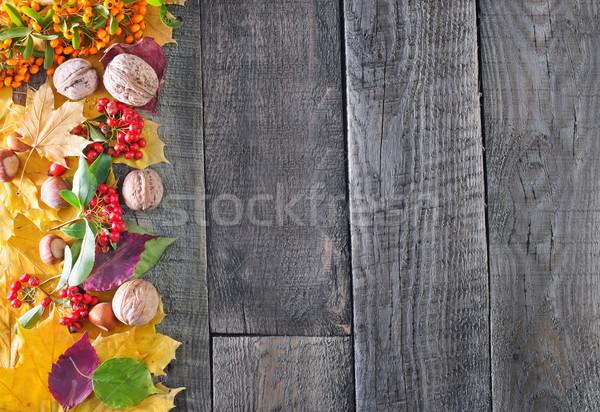 Otono cosecha feliz manzana fondo Foto stock © tycoon