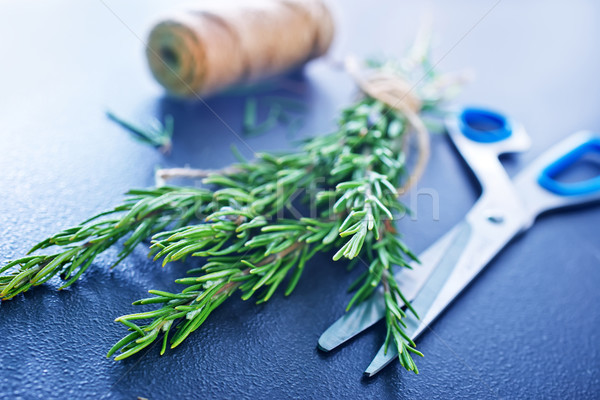 rosemary Stock photo © tycoon