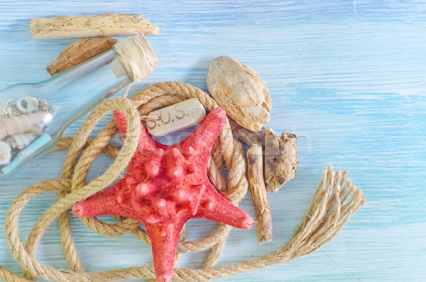 sea shells on blue background Stock photo © tycoon