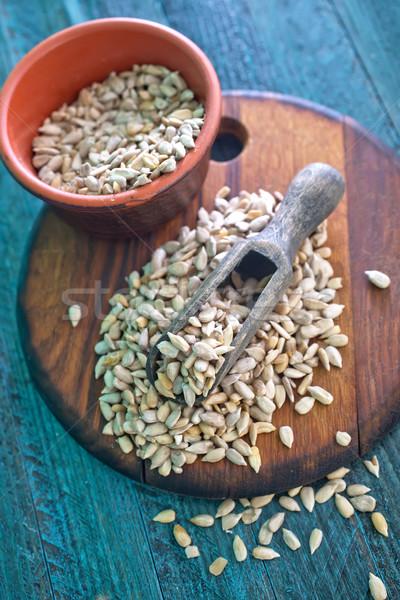 Stock photo: sunflower seed