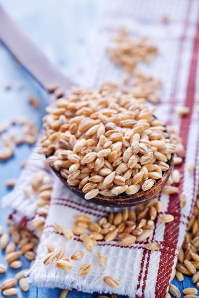wheat Stock photo © tycoon