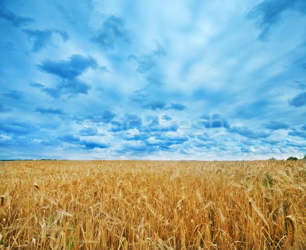 Stok fotoğraf: Gökyüzü · güneş · doğa · bulut · renk