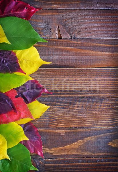 Texture nature rouge rétro saleté Photo stock © tycoon