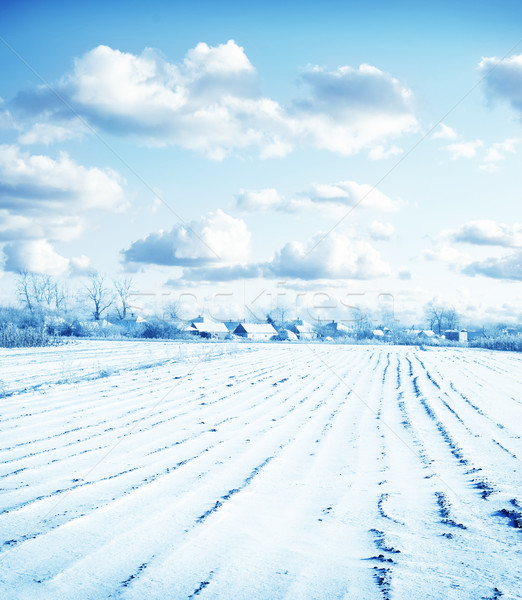 winter Stock photo © tycoon