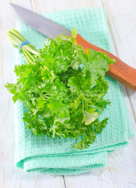 Maydanoz yaprak mutfak tıp renk salata Stok fotoğraf © tycoon