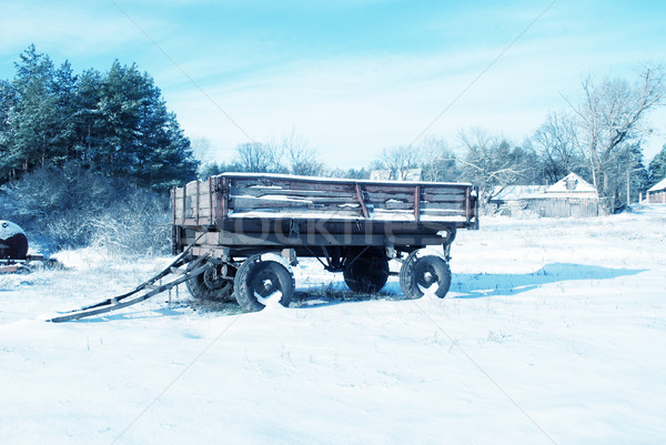 cart in winter vilage Stock photo © tycoon