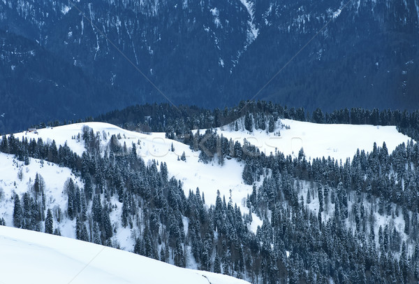Snow in mountains.  Stock photo © tycoon