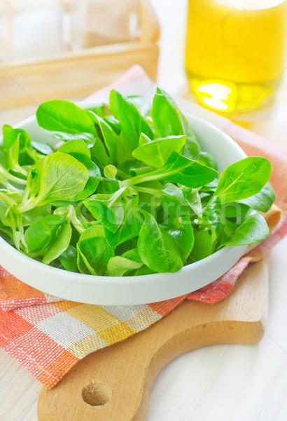 Mais Salat abstrakten Blatt Bereich Platte Stock foto © tycoon