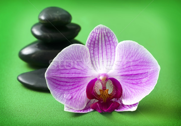 Orchid and black basalt for spa on green background Stock photo © tycoon