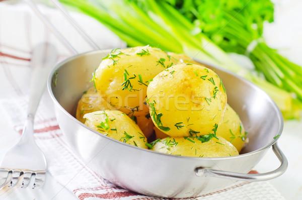 Főtt krumpli tavasz természet kert egészség Stock fotó © tycoon