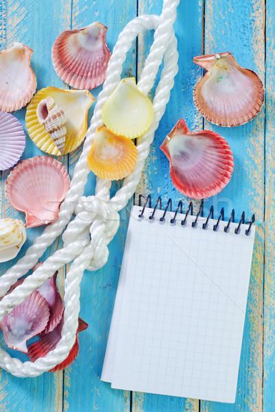 Nota zee shell ontwerp achtergrond schip Stockfoto © tycoon