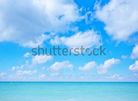 Natura mare costa acqua panorama sfondo Foto d'archivio © tycoon