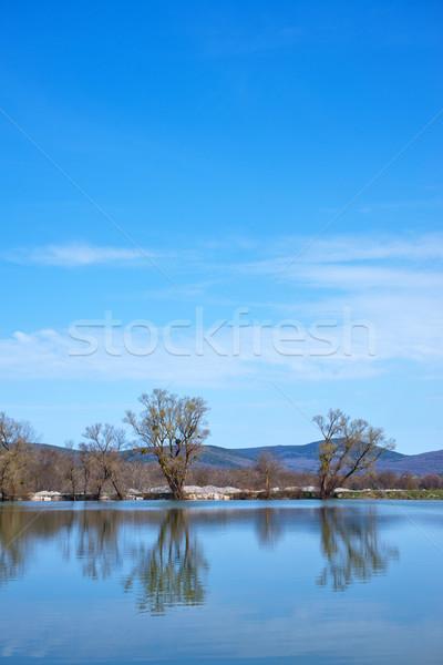 Сток-фото: озеро · лет · Blue · Sky · небе · дерево · весны