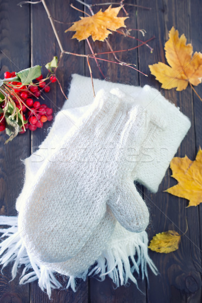 mittens and scarf Stock photo © tycoon