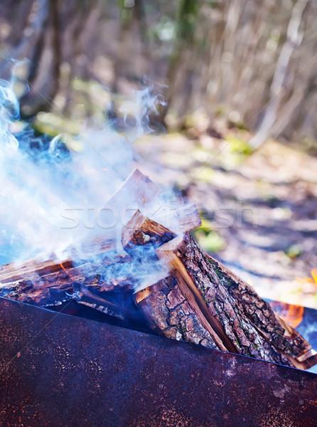 Barbecue textúra fa természet füst szín Stock fotó © tycoon