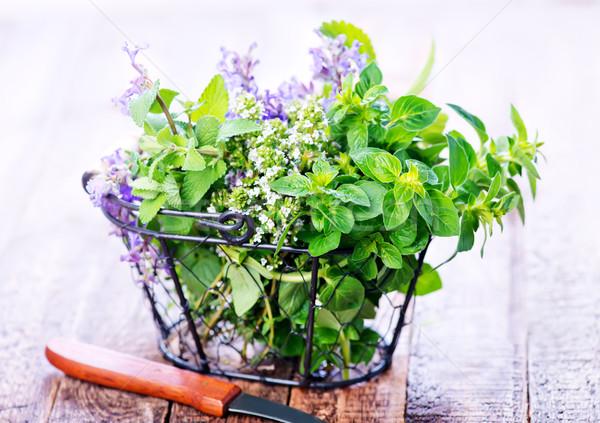 Stock fotó: Aroma · gyógynövény · friss · szárított · növénygyűjtemény · fém · kosár