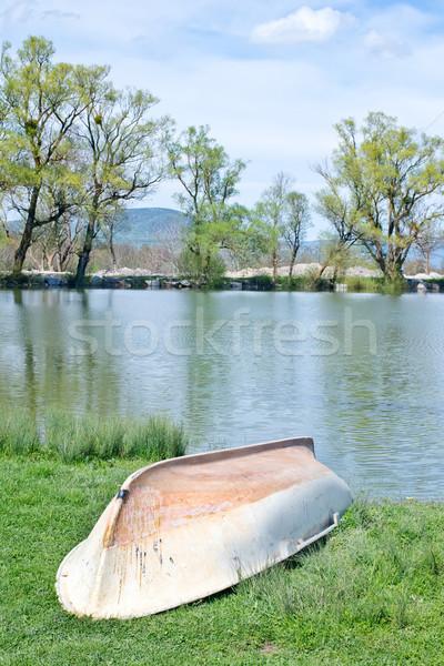 Lago casa floresta jardim verão verde Foto stock © tycoon