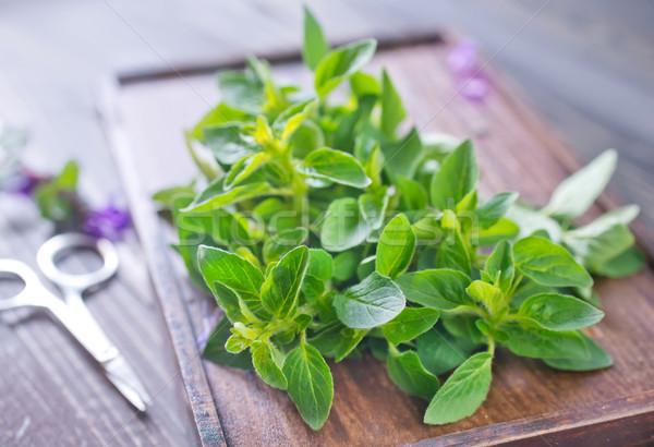 аромат травы трава зеленый завода банка Сток-фото © tycoon