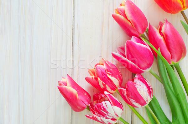 Lale çiçek doku sevmek dizayn yeşil Stok fotoğraf © tycoon