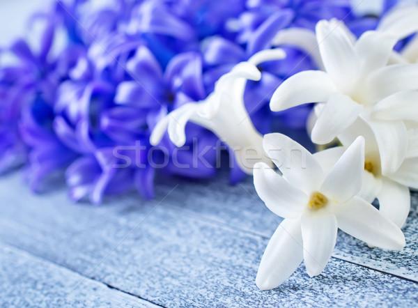 Bloemen voorjaar kleur witte vakantie boeket Stockfoto © tycoon