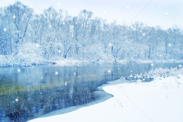 winter river Stock photo © tycoon