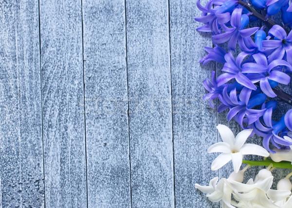 Stok fotoğraf: çiçekler · bahar · doğa · güzellik · yaz · bitki