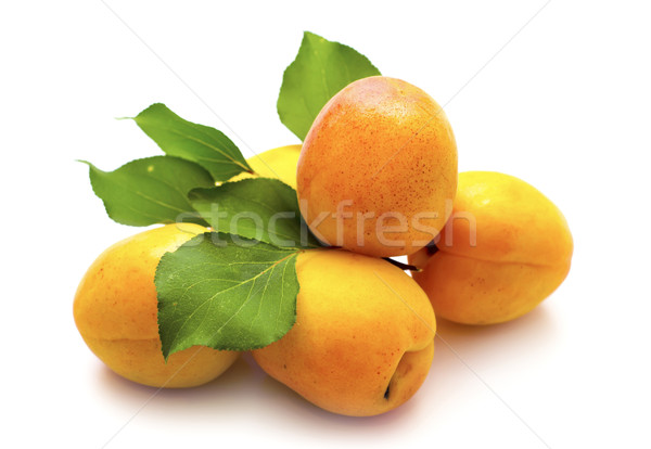 apricot Stock photo © tycoon