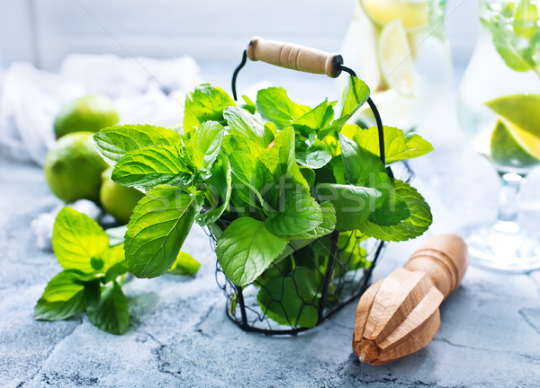 ingredients for mojito Stock photo © tycoon