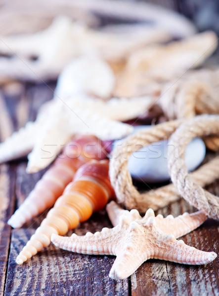 морем снарядов цвета Starfish лет текстуры Сток-фото © tycoon
