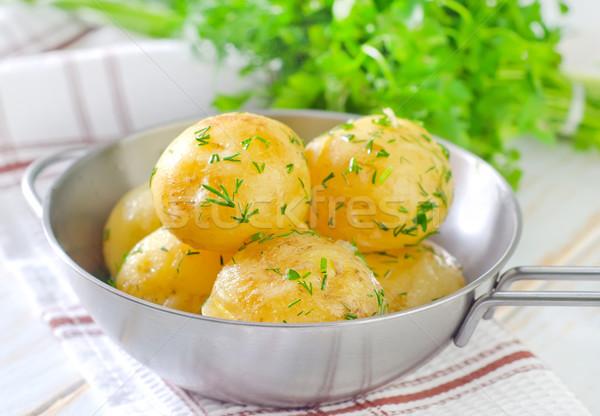 ジャガイモ 食品 自然 緑 ディナー ストックフォト © tycoon
