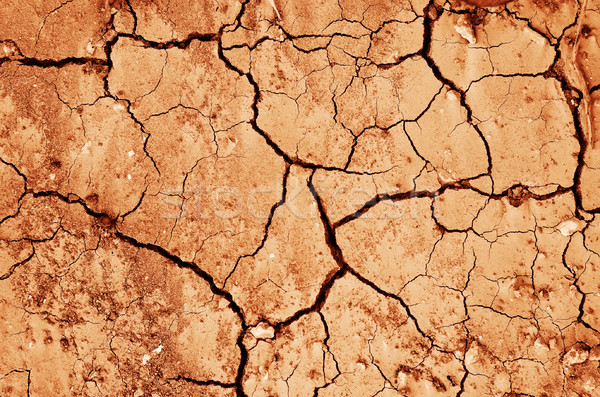 засуха текстуры природы фон песок мертвых Сток-фото © tycoon