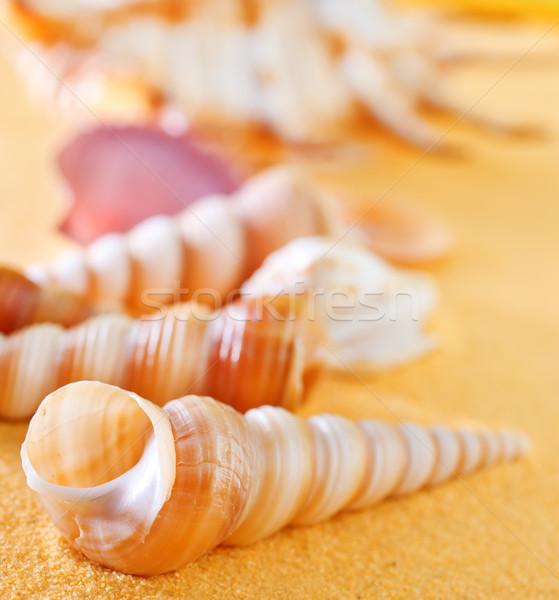 лет желтый песок морем пляж природы Сток-фото © tycoon