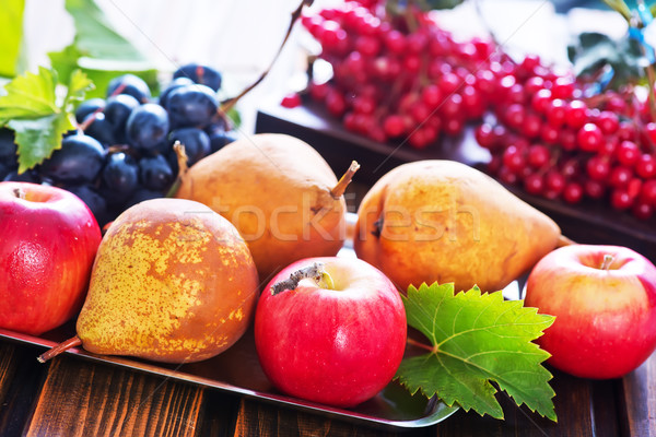 autumn fruits Stock photo © tycoon