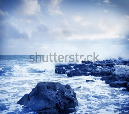 Без названия Stock photo © tycoon