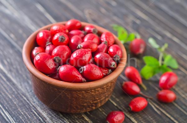 Rouge Berry chien rose fruits santé Photo stock © tycoon