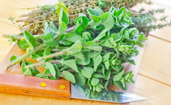 Orégano madeira natureza jardim plantas fresco Foto stock © tycoon