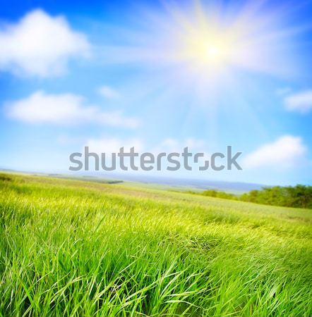 Сток-фото: области · небе · весны · трава · солнце · закат
