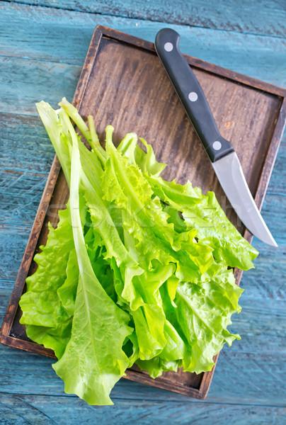 Csoport saláta növények fehér kosár zöldség Stock fotó © tycoon