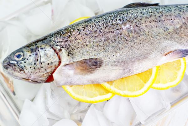 Forellen Essen Fisch Eis rot Stock foto © tycoon